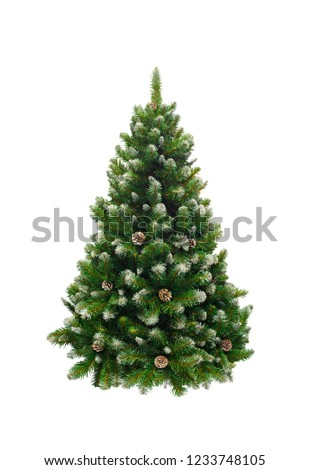 Green New Year fir tree, fir-tree isolated on white background #1233748105