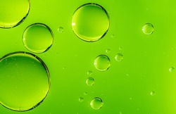 Green oil drops in water. Bubbles of different sizes on green abstract background