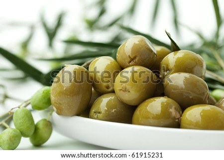 green Olives on branch with leaves Background