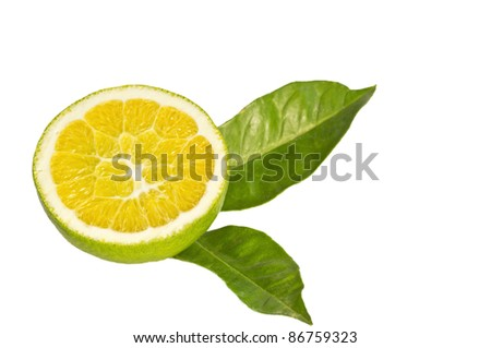 Green orange with some leaves in white background