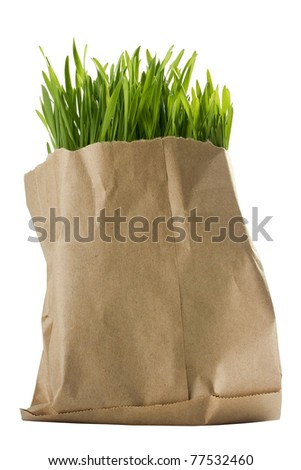 Green organic wheat grass in a brown bag.