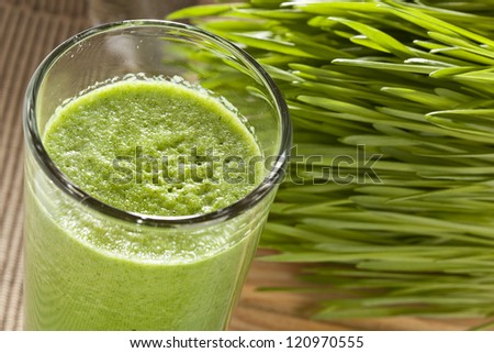 Green Organic Wheat Grass Shot ready to drink