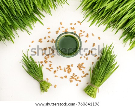 Green organic wheat grass white over dark wood background,top view ,young grass stage.