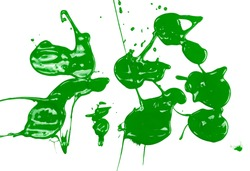 Green paint stains, color spillage drops isolated on white background, top view