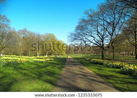 Green park lane #1235333695