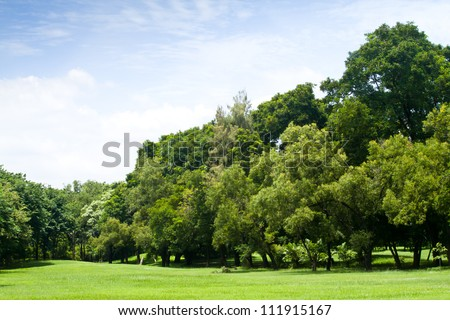 Green park with blue sky #111915167