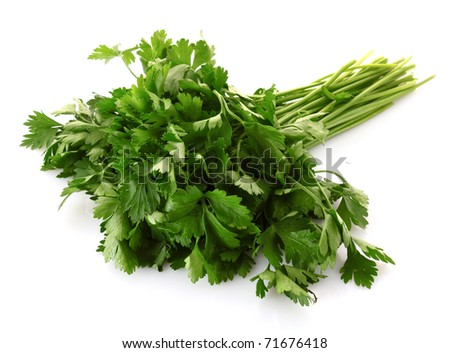 Green parsley isolated on white