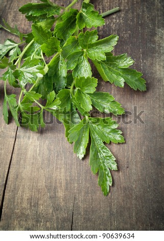 green parsley on old plank