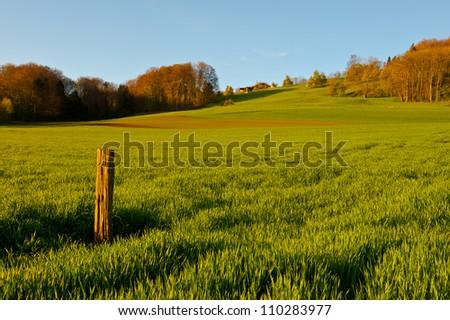 Green Pastures around Farm House in Switzerland