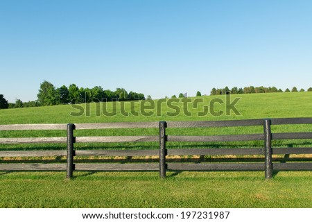 Green pastures of horse farms with black wooden fence. Country summer landscape. #197231987