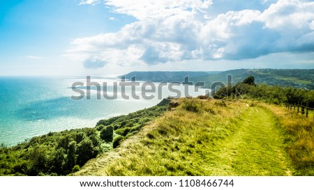 Green pathway / Trekking path on hills in English holiday countryside near Charmouth. British summer holidays by the sea / English Channel.  Golden Cap on jurassic coast in Dorset, UK. Selective focus