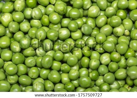 Green pea background. Pisum sativum Photo stock ©