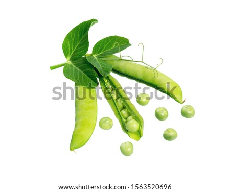 Green peas in pods with leaf and sprouts isolated on white background. Fresh pea pod.