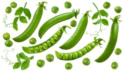 Green peas, pods and leaves set isolated on white background. Package design elements with clipping path