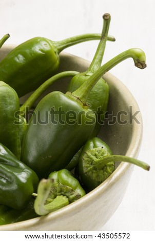 Green peppers in a bowl. Spanish cuisine. Selective focus. Pimientos de Padron.