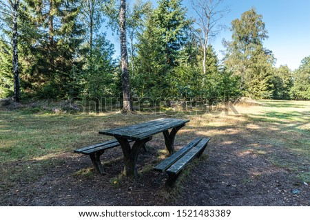 green pic nick table in the woods in a forest or park in the shade on a summers day with blue sky background with no people visible