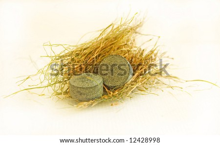 green pills vitamins in grass isolated