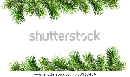 Green pine twigs for Christmas borders isolated on white background. Flat lay. Top view. #753317434