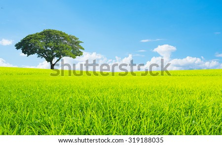 Green planet - Earth.nature landscape.