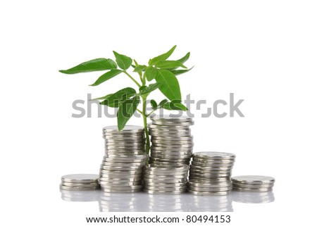 Green plant growing from the coins. Money financial concep