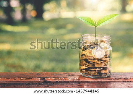 green plant growing on golden coin in glass jar on wood table in park with blur nature background. business financial banking saving concept. investment profit income. marketing startup success. #1457944145