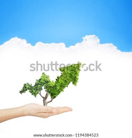 Green plant grows up in arrow shape in hand over sky background. Concept business image #1194384523