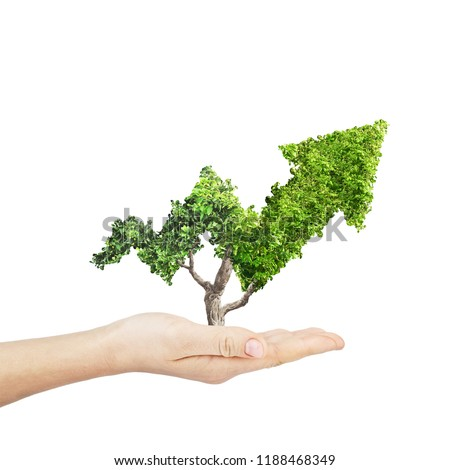Green plant grows up in arrow shape in hand over white background. Concept business image #1188468349