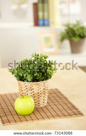 Green plant in holder and green apple on table, still life picture.? - stock photo