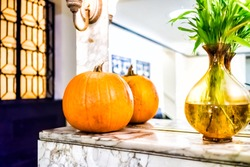 Green plant in vase water decoration with orange pumpkin in front of mirror of apartment building lobby indoors interior, reflection in October Halloween fall autumn season Thanksgiving