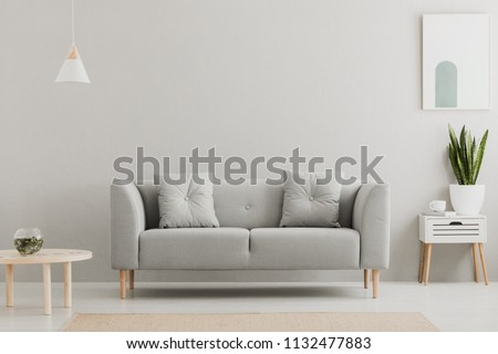 Green plant on a scandinavian cabinet with drawer and a cozy couch with pillows in a gray, simple living room interior with place for a coffee table. Real photo. #1132477883