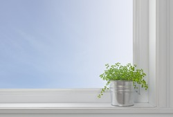 Green plant on a window sill, in a modern home, with blue sky seen through the window.
