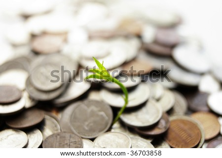 green plant shoot growing from coin pile