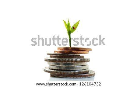 Green plant shoot with ladybug growing from coins