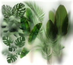 Green Plants behind the glass with lighting_ layout for printing. Wide section. Imitation (3d rendering)