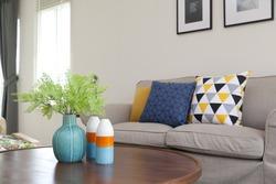 green plants in ceramic vase in living room on table