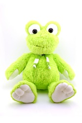 Green plush frog  isolated on white
