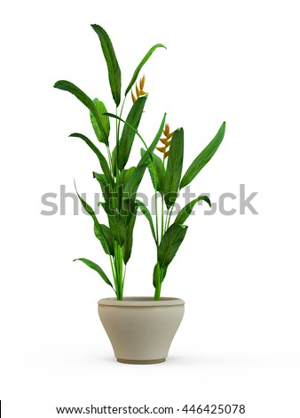 Green potted plant isolated on white background. 3D Rendering, Illustration. - Shutterstock ID 446425078