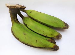 Green raw banana in isolated background. It belongs to banana family but tend to be firmer and can not be eaten raw. They require cooking and used as vegetable. The are known as potatoes of Caribbean.