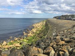 Green rocks. Taken at Malahide beach Dublin Ireland.