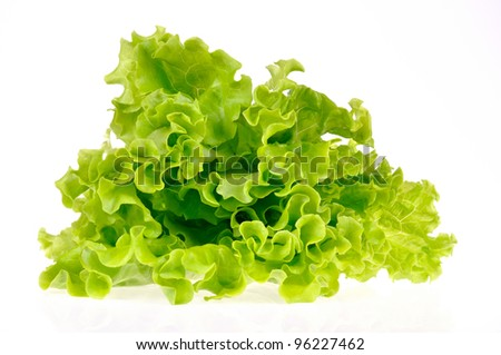 green salad isolated on a white background