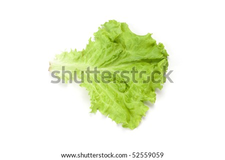 Green salad leaf isolated on white background