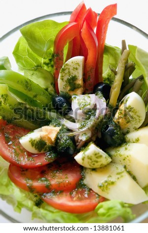 Green salad with tomatoes, red and green peppers, eggs,olives and oil