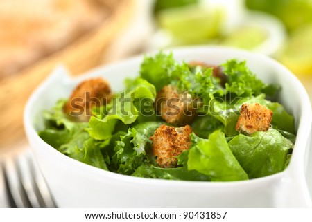 Green salad with yogurt dressing and croutons made of wholewheat bread (Selective Focus, Focus on the top of the left crouton and the front of the right crouton in the front)