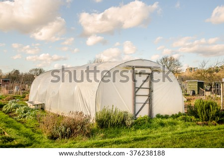 Green self-sufficiency  - Polythene tunnel handmade greenhouse in allotments for growing vegetables. #376238188