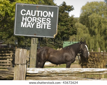 Green sign cautioning that horses may bite atop a wooden fence. Brown horse feeding in the background. Toronto Island, Ontario, Canada. - stock photo