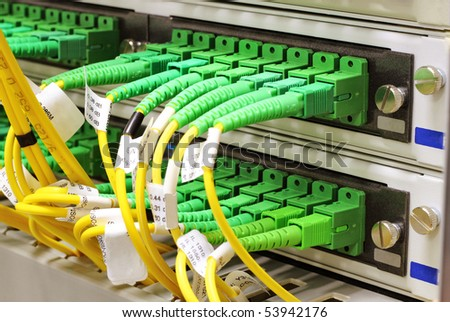 Green singlemode sc connectors connected to patch panel