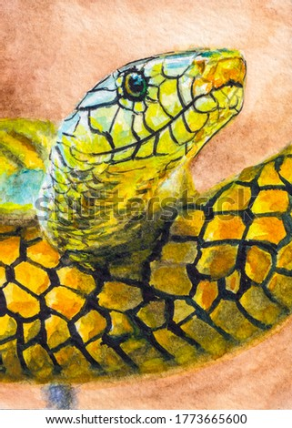 Green snake. Beautiful dangerous reptile. Watercolor painting.