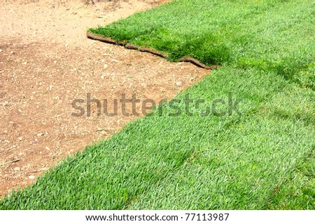 green sod grass and brown earth Background