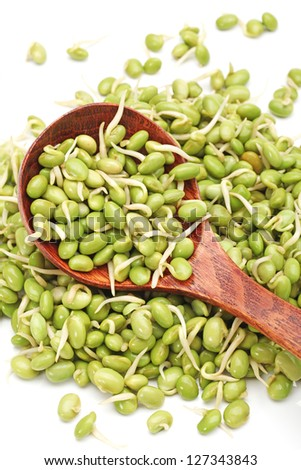 green soybean sprouts on white background