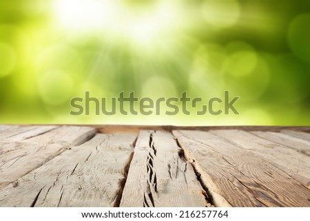 green space of garden with wooden retro table